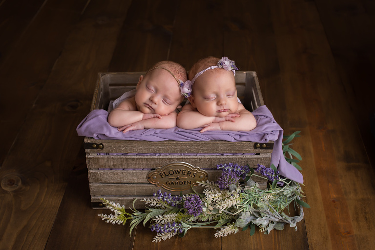 newborn photographer in rochester ny captures twins sleeping with chins on hand in a crate with purple flowers