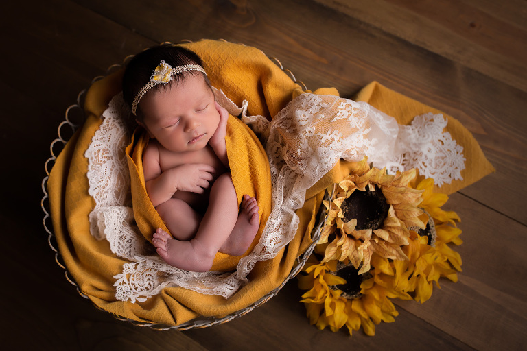 newborn photographer in rochester ny captures baby girl sleeping in sunflowers
